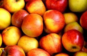 apple-fruit